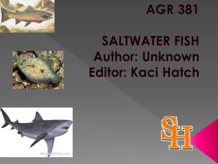  Categorize saltwater fish into one of the three ecological groupings;  List and describe representatives species from each of the three groupings;