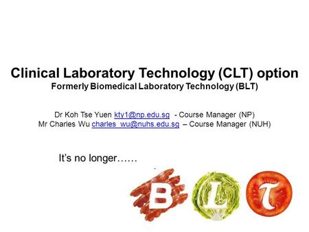Clinical Laboratory Technology (CLT) option Formerly Biomedical Laboratory Technology (BLT) Dr Koh Tse Yuen - Course Manager