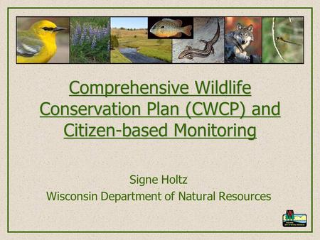 Comprehensive Wildlife Conservation Plan (CWCP) and Citizen-based Monitoring Signe Holtz Wisconsin Department of Natural Resources.