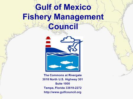 Gulf of Mexico Fishery Management Council The Commons at Rivergate 3018 North U.S. Highway 301 Suite 1000 Tampa, Florida 33619-2272