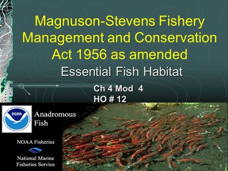 Magnuson-Stevens Fishery Management and Conservation Act 1956 as amended Ch 4 Mod 4 HO # 12 Essential Fish Habitat 1.