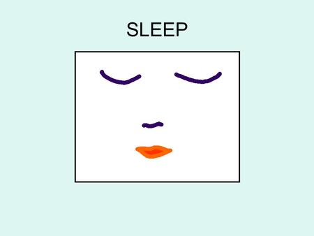 SLEEP. Why do people need sleep? A night of uninterrupted sleep can give our bodies and minds recharged for the next day.
