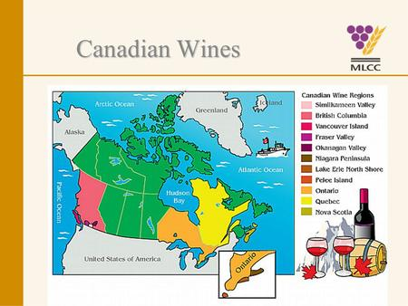 Canadian Wines. Canadian Wine Labels Understanding them.