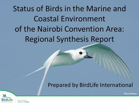 Status of Birds in the Marine and Coastal Environment of the Nairobi Convention Area: Regional Synthesis Report Prepared by BirdLife International ©Ross.