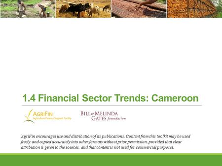 1.4 Financial Sector Trends: Cameroon AgriFin encourages use and distribution of its publications. Content from this toolkit may be used freely and copied.