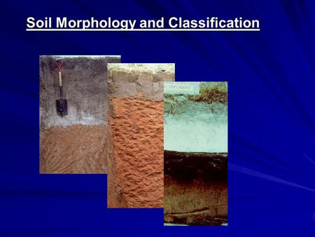 Soil Morphology and Classification. The Language of Soils Loamy, siliceous, hyperthermic grossarenic paleudult Purpose.