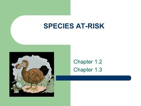 SPECIES AT-RISK Chapter 1.2 Chapter 1.3. What's Out There? Scientists were startled in 1980 by the discovery of a tremendous diversity of insects in.