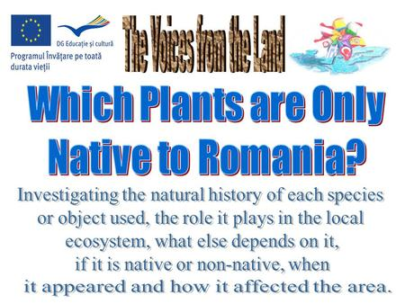Many of Romania's ecological systems remain intact, with native plant species untouched. The extensive forests of the Carpathian Mountains make up one.