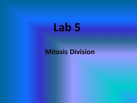 Lab 5 Mitosis Division. What is Mitotic Cell Division? Division of somatic cells (body cells) (non reproductive cells) in eukaryotic organisms A single.
