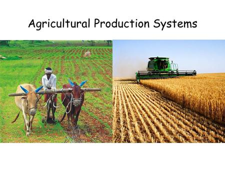 Agricultural Production Systems. Starter Do the following images show a farming INPUT, PROCESS or OUTPUT?