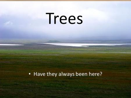 Trees Have they always been here?.