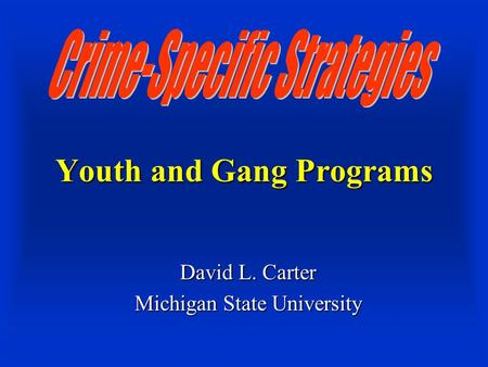 Youth and Gang Programs David L. Carter Michigan State University.