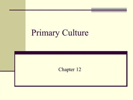 Primary Culture Chapter 12. What is Primary Cell Culture? That stage of culture obtained after isolation of cells but before first subculture.