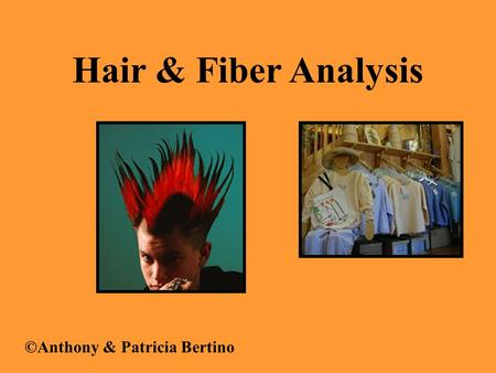Hair & Fiber Analysis ©Anthony & Patricia Bertino.