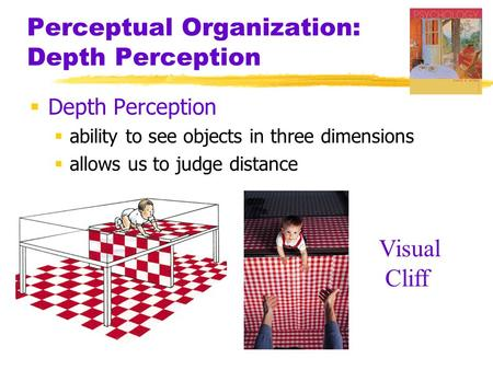 Need some help with my essay perceptual perception?