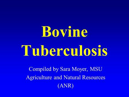 Bovine Tuberculosis Compiled by Sara Moyer, MSU Agriculture and Natural Resources (ANR)