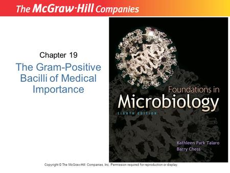 Chapter 19 The Gram-Positive Bacilli of Medical Importance Copyright © The McGraw-Hill Companies, Inc. Permission required for reproduction or display.