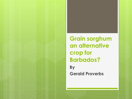 Grain sorghum an alternative crop for Barbados? By Gerald Proverbs.