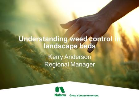 Understanding weed control in landscape beds Kerry Anderson Regional Manager.