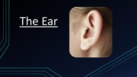 The Ear. Functions o Detects sound o Helps maintain balance o Maintains alertness o Aids emotion, memory, detection of body language and thought.