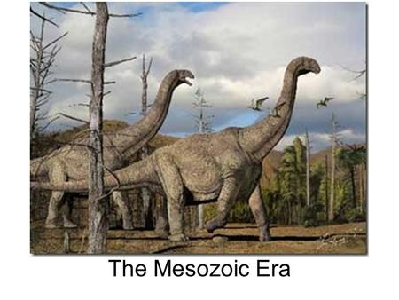 The Mesozoic Era Biblical Reference He who forms the mountains, who creates the wind, and who reveals his thoughts to mankind, who turns dawn to darkness,