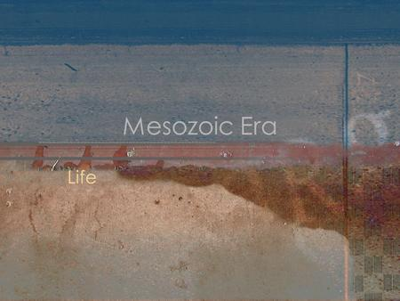"Mesozoic Era Life. Mesozoic Life Known as ""Age of Reptiles"" Mammals and angiosperms evolve."