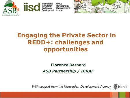 Engaging the Private Sector in REDD+: challenges and opportunities With support from the Norwegian Development Agency Florence Bernard ASB Partnership.