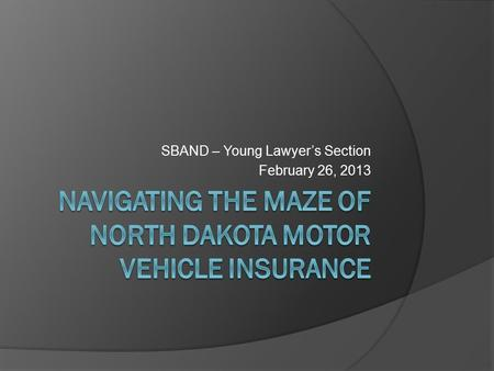 SBAND – Young Lawyer's Section February 26, 2013.