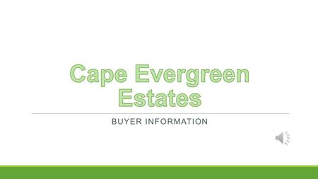 BUYER INFORMATION Overview Development Description Design Breakdown Sales Information.