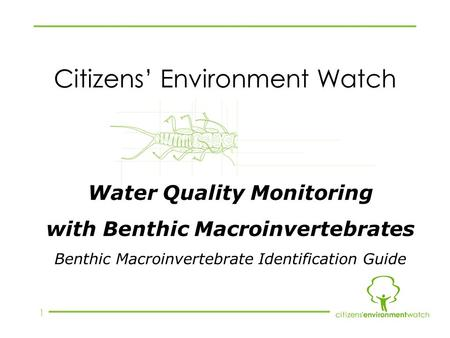 1 Citizens' Environment Watch Water Quality Monitoring with Benthic Macroinvertebrates Benthic Macroinvertebrate Identification Guide.