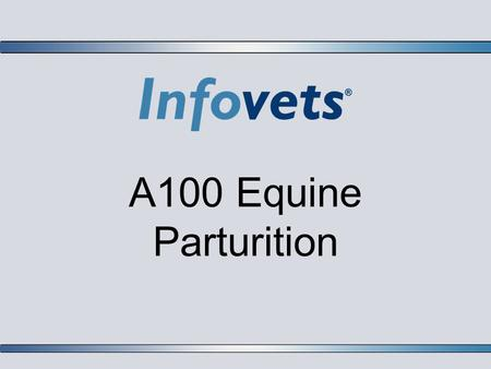 A100 Equine Parturition. Infovets Educational Resources – www.infovets.com – Slide 2 Vaccination of the Pregnant Mare  A vaccination program should include.
