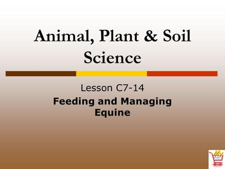 Animal, Plant & Soil Science Lesson C7-14 Feeding and Managing Equine.