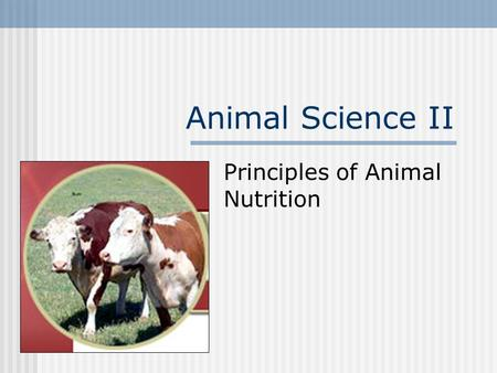 Animal Science II Principles of Animal Nutrition.