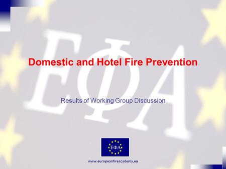 Www.europeanfireacademy.eu Domestic and Hotel Fire Prevention Results of Working Group Discussion.