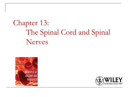 Chapter 13: The Spinal Cord and Spinal Nerves. Copyright 2009, John Wiley & Sons, Inc. Spinal Cord Anatomy Protective structures: Vertebral column and.