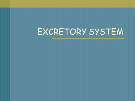 EXCRETORY SYSTEM. WHAT IS THE EXCRETORY SYSTEM? System in the body that collects wastes produced by cells and removes the wastes from the body.