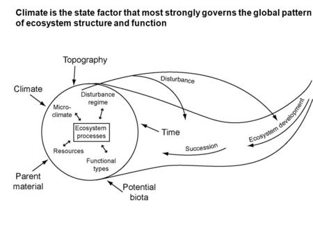 Climate is the state factor that most strongly governs the global pattern of ecosystem structure and function.