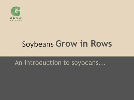 Soybeans Grow in Rows An introduction to soybeans...