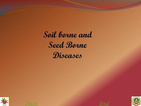 NextEnd Soil borne and Seed Borne Diseases. Soil borne disease The diseases that are caused by fungal pathogens which persist (survive) in the soil matrix.