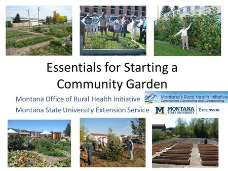 Essentials for Starting a Community Garden Montana Office of Rural Health Initiative Montana State University Extension Service.