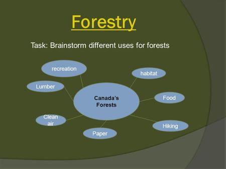 Forestry Canada's Forests Lumber Clean air habitat Food Hiking Paper recreation Task: Brainstorm different uses for forests.