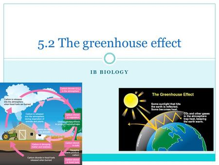 IB BIOLOGY 5.2 The greenhouse effect. The Carbon Cycle Carbon exists in many forms:  Atmospheric gases (CO2 and Methane- CH4)  Dissolved CO2 in aquatic.