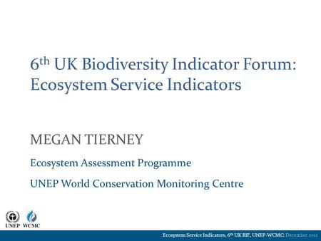 6 th UK Biodiversity Indicator Forum: Ecosystem Service Indicators MEGAN TIERNEY Ecosystem Assessment Programme UNEP World Conservation Monitoring Centre.