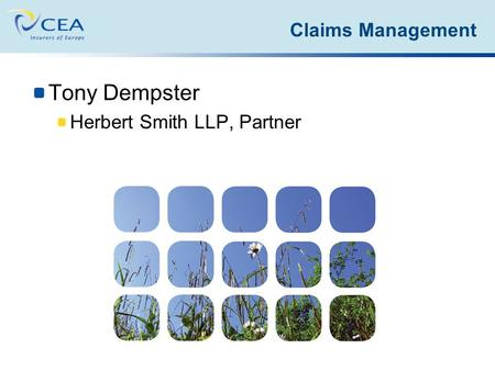Tony Dempster Herbert Smith LLP, Partner Claims Management.