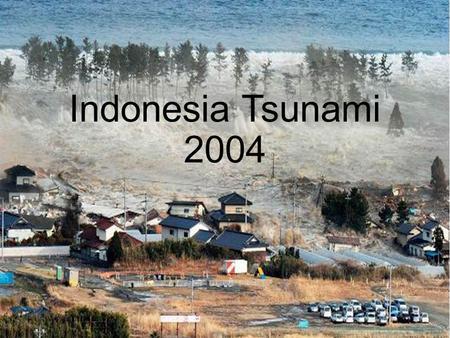 stories of tsunami