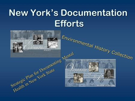New York's Documentation Efforts Strategic Plan for Documenting Mental Health in New York State Environmental History Collection.