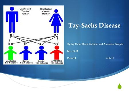  Tay-Sachs Disease By Ivy Poon, Diana Jackson, and Annaliese Yostpile Mrs. G-M Period 42/8/11.