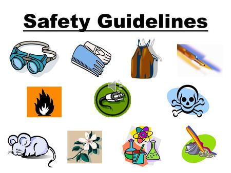 Safety Guidelines General Information Always get your TEACHER'S permission before beginning a Lab. Read the Lab before starting Look up unknown safety.