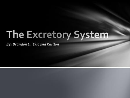 By: Brandon L. Eric and Kaitlyn. Title- The Excretory System Slide 1: How Can You Maintain A Healthy Excretory System Slide 2: What Are Two Professions.
