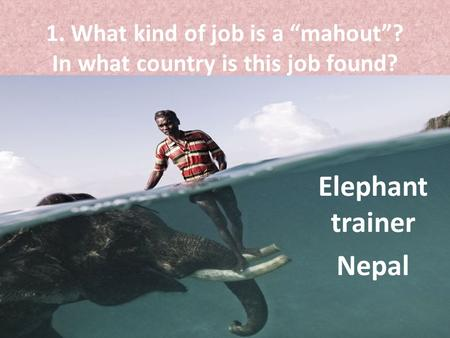 "1. What kind of job is a ""mahout""? In what country is this job found?"